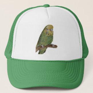 green budgie art cap
