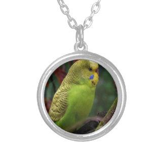 Green Budgie Custom Jewelry