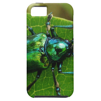 Green bug on green leaf iPhone SE/5/5s case