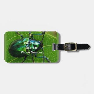 Green bug on green leaf tag for luggage