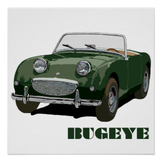 Green Bugeye Poster