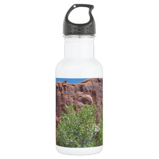 Green Bush and Red Rock 18oz Water Bottle