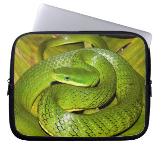 Green Bush Rat Snake Computer Sleeve