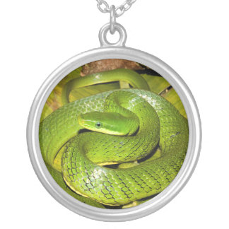 Green Bush Rat Snake Silver Plated Necklace