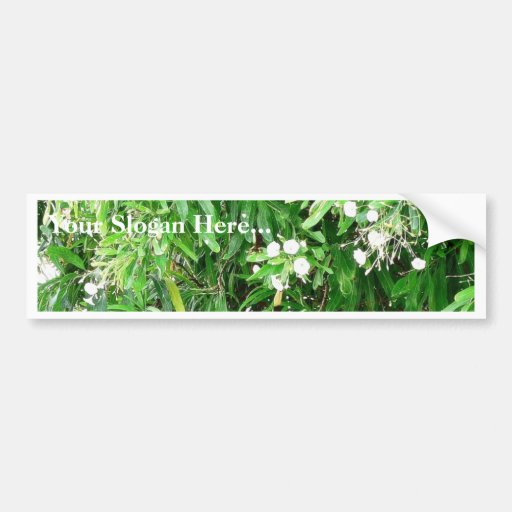 Green Bush With White Flowers Car Bumper Sticker