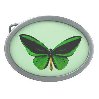Green Butterfly Belt Buckle