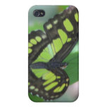 Green Butterfly iPhone 4 Case