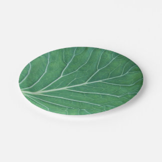 Green Cabbage Leaf 0933 Paper Plate