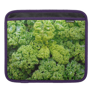 Green cabbage sleeve for iPads