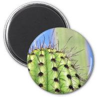 Green Cactus Thorns Refrigerator Magnet