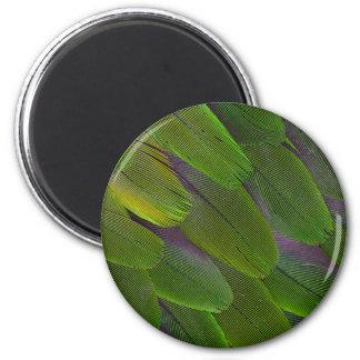 Green Caique Parrot Feather Design Magnet