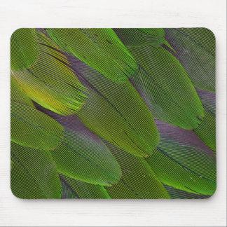 Green Caique Parrot Feather Design Mouse Pad