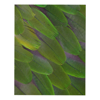 Green Caique Parrot Feather Design Panel Wall Art