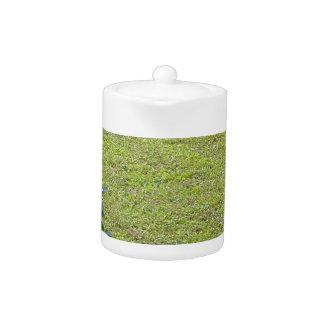 Green Camellia plant Teapot
