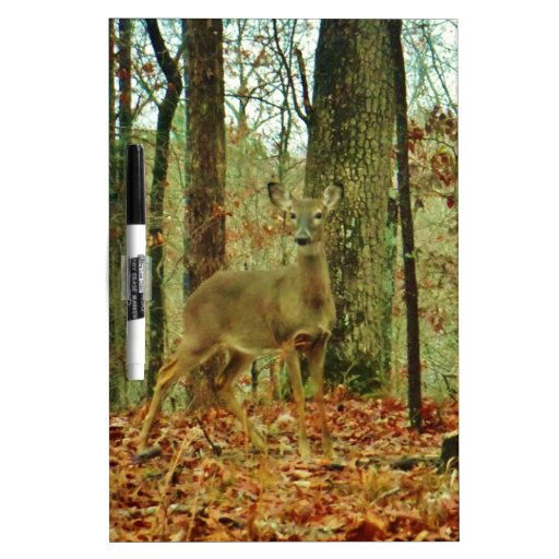 Green Camo,Camouflage Deer Dry Erase Whiteboard
