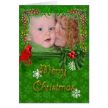 Green Cardinal Family Portrait Christmas Card