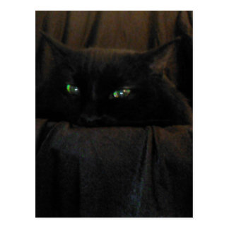 Green Cat Eyes Postcard