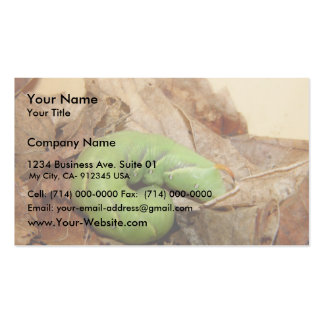 Green Caterpillar Hiding The Dead Leave Business Card Templates