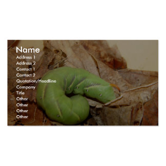 Green Caterpillar Hiding The Dead Leave Business Cards