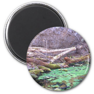 Green Cave 2 Inch Round Magnet