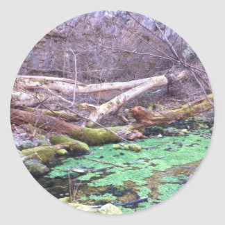 Green Cave Classic Round Sticker