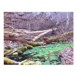 Green Cave Postcard