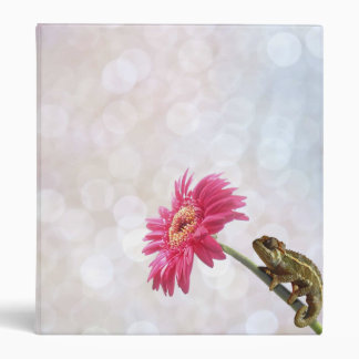 Green chameleon on pink flower 3 ring binder
