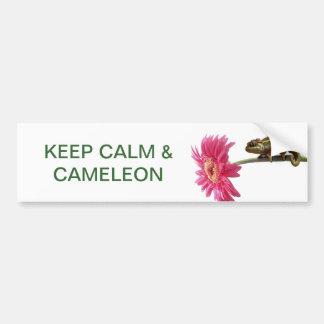 Green chameleon on pink flower bumper sticker