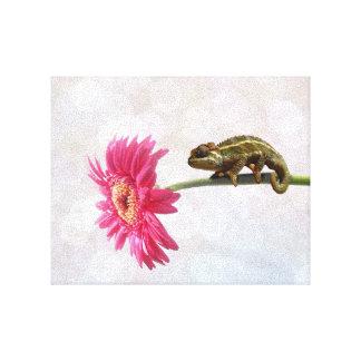 Green chameleon on pink flower canvas print