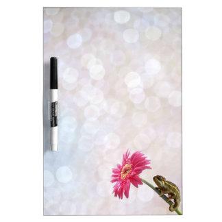 Green chameleon on pink flower dry erase board