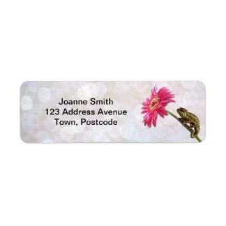 Green chameleon on pink flower return address label