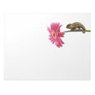 Green chameleon on pink flower notepad
