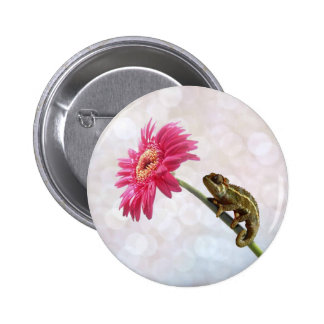 Green chameleon on pink flower pinback button