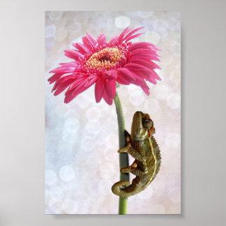 Green chameleon on pink flower poster