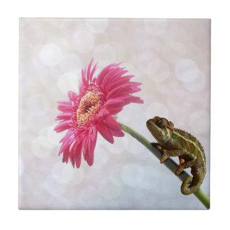 Green chameleon on pink flower tile