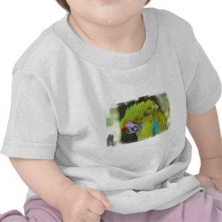 Green Cheek Conure Baby T-Shirt