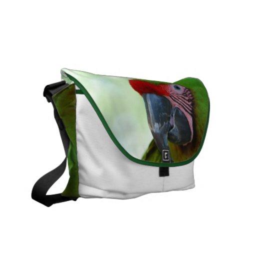 Green Cheek Conure Messenger Bag