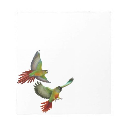 Green Cheek Conure Parrots Notepad