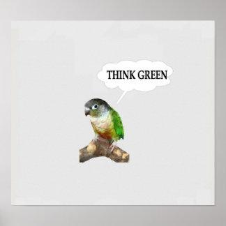 "Green Cheek Conure ""Think Green."" Poster"