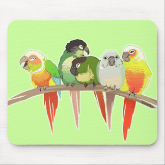 Green Cheek Conures Mouse Pad