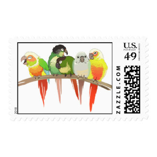 Green Cheek Conures Stamp