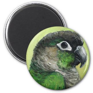 """""""Green Cheeked Conure"""" Bird Art Magnet"""