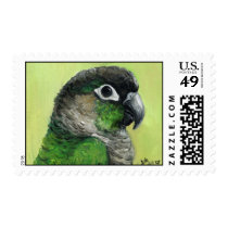 """Green Cheeked Conure"" Bird Art Postage Stamp"