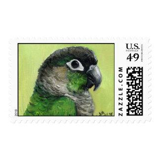 """Green Cheeked Conure"" Bird Art Postage Stamp"