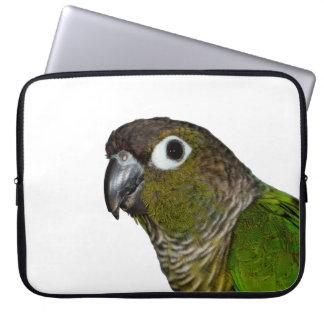 Green Cheeked Conure Computer Sleeve