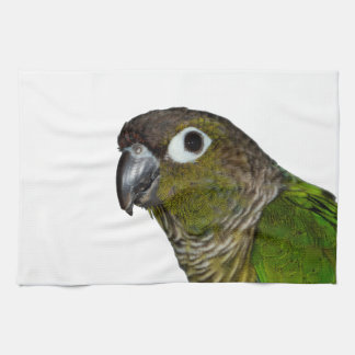 Green Cheeked Conure Kitchen Towel