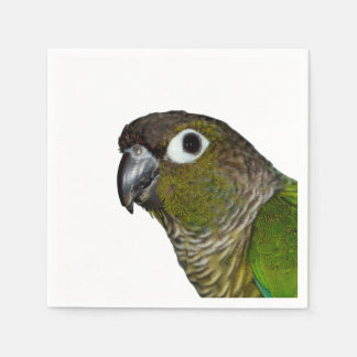 Green Cheeked Conure Paper Napkin