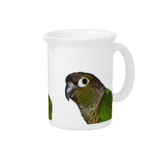 Green Cheeked Conure Pitchers