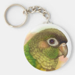 Green-cheeked conure realistic painting keychain