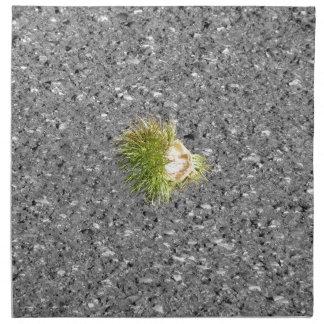 Green chestnut curl cloth napkin